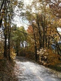 Sinton Trail, Oct. 19, 2012