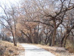 The Arkansas River Trail, just east of City Park.