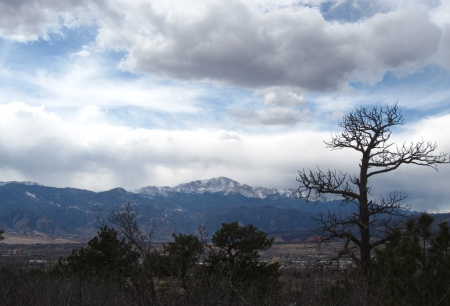 Pikes Peak as seen from the Yucca Flats dog-walking ghetto at Palmer Park.