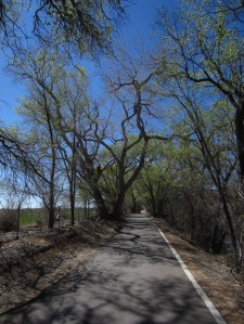 You find yourself on a nicely appointed bike path like this and the idea of turning around just seems wrong.