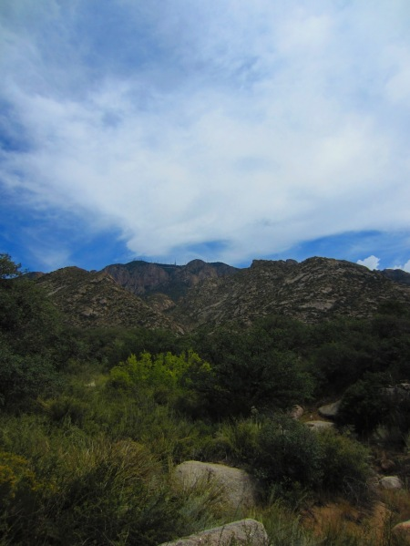 The Sandias from La Cueva Campground.