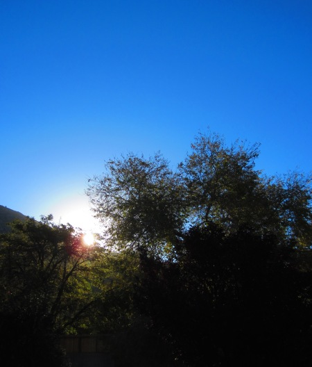 sunrise-11142015