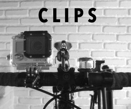 clips-bug