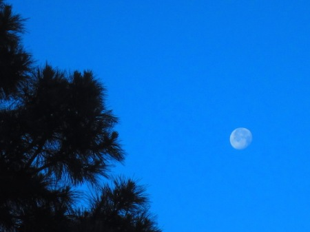 moon-05242016