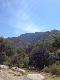 Near the top of the La Cueva picnic area.