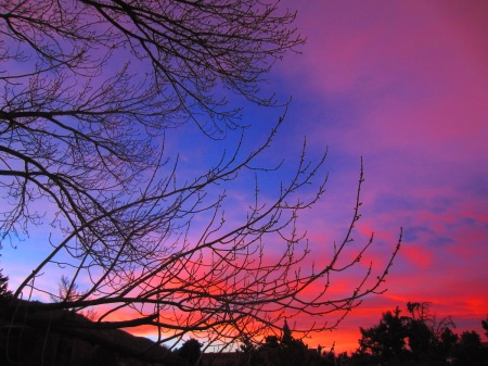 Red dawn. OK, so it's more purple and magenta.