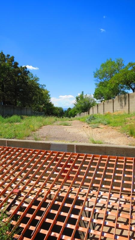 The arroyo behind El Rancho Pendejo